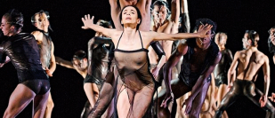 National Dance Awards 2015 nominations: ice dance, flamenco and independent companies celebrated