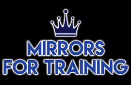 Mirrors For Training Limited
