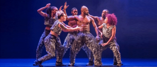 Boy Blue Entertainment: Blak Whyte Gray review – explosive hip-hop robot ballet